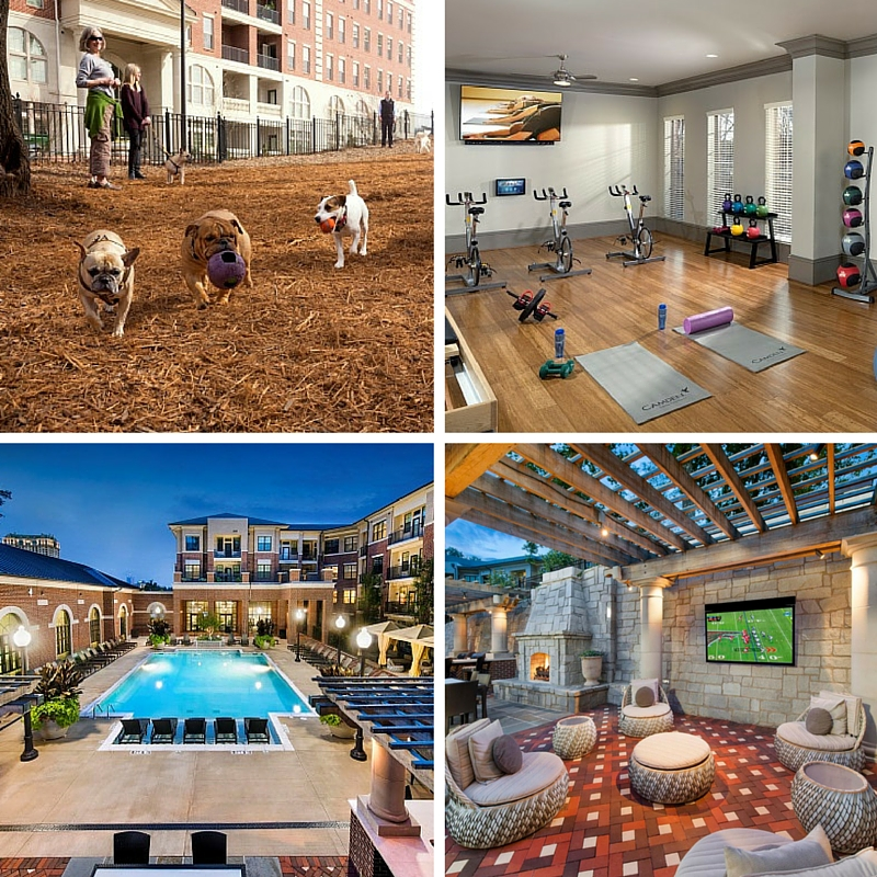 Camden Paces amenities in Atlanta, GA dog park-gym-pool