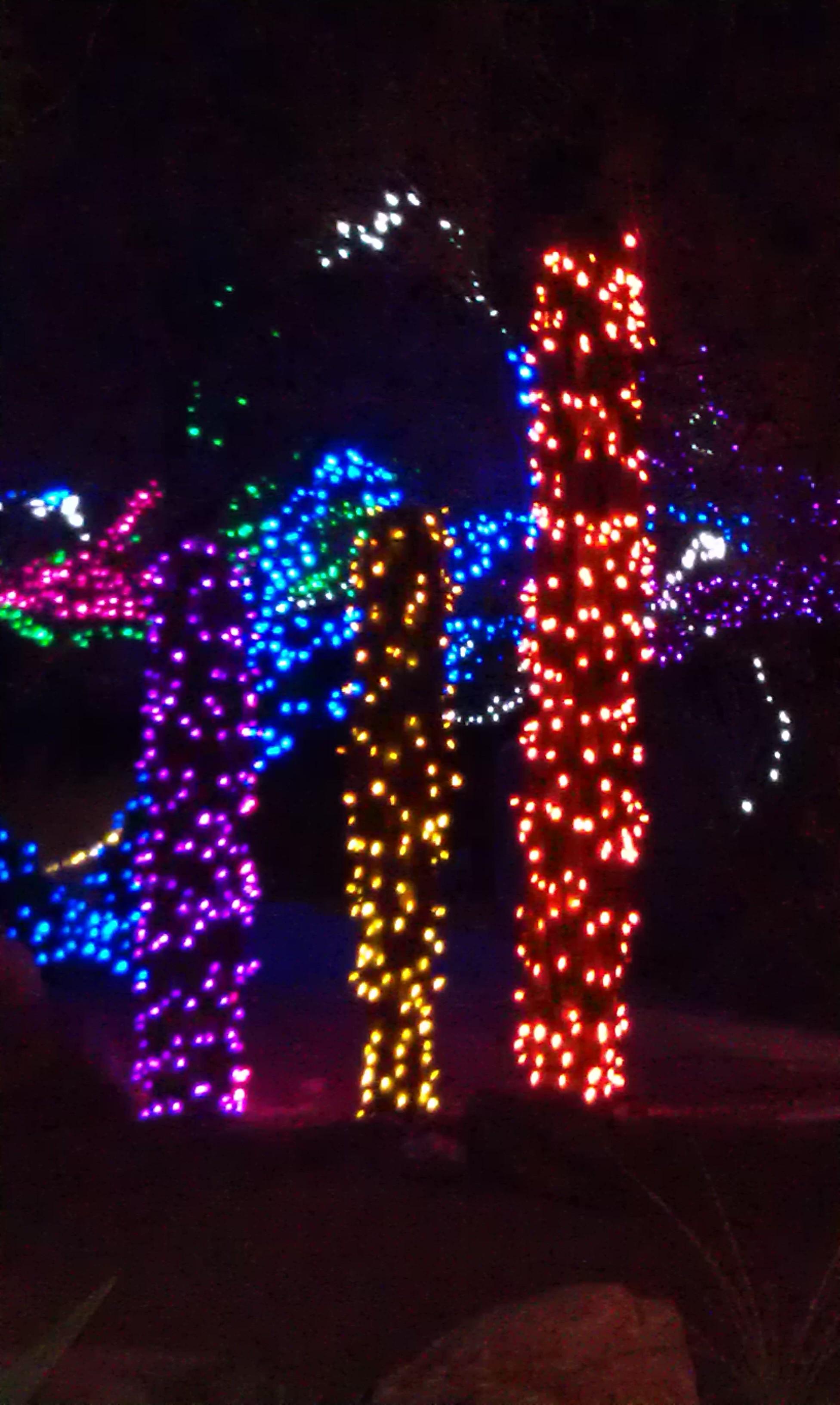 Zoo Lights - Phoenix Zoo